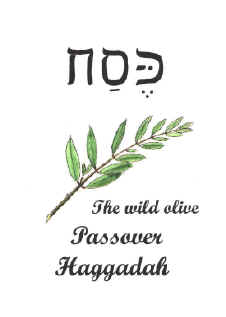 A Haggadah - the book for celebrating your passover