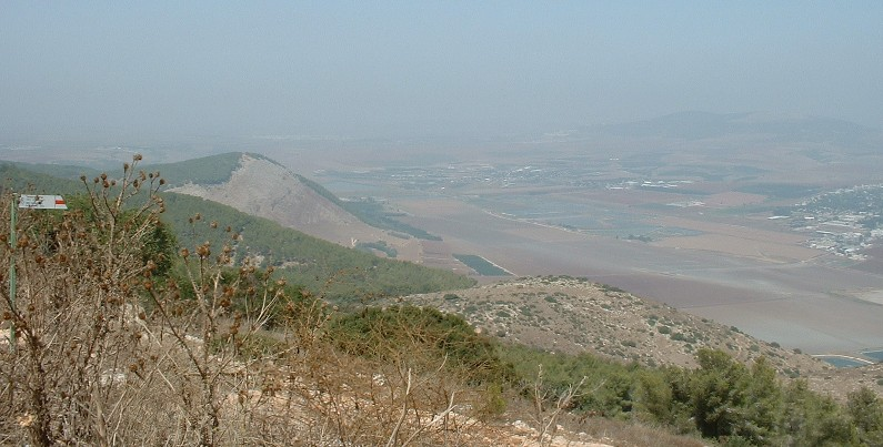 The Jezreel valley from Mount Gilboa - Phot PJ Cook